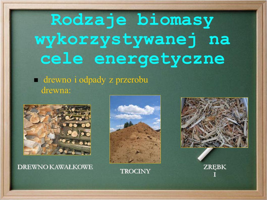 Rodzaje biomasy wykorzystywanej na cele energetyczne drewno i odpady z przerobu drewna: DREWNO KAWAŁKOWE TROCINY ZRĘBK I