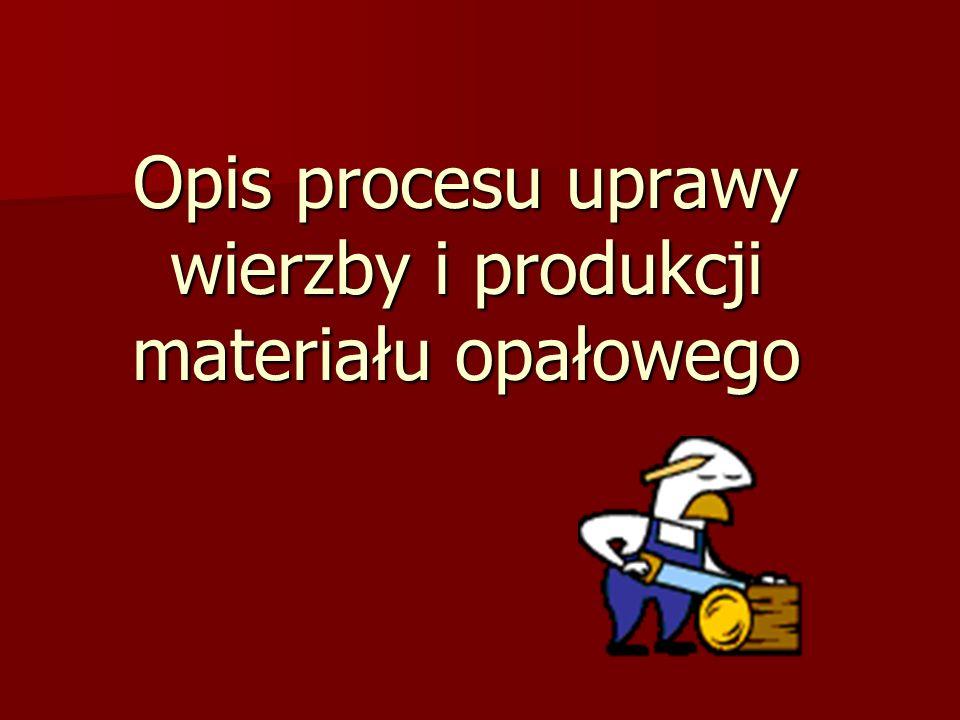 Opis procesu uprawy wierzby i produkcji materiału opałowego