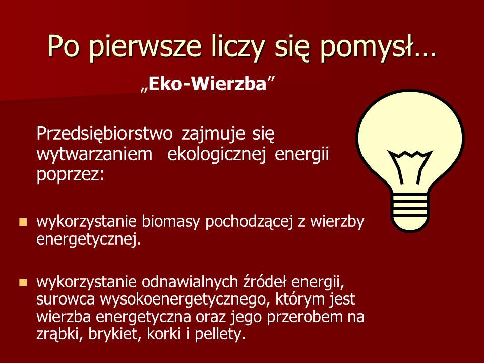 """Po pierwsze liczy się pomysł… """"Eko-Wierzba Przedsiębiorstwo zajmuje się wytwarzaniem ekologicznej energii poprzez: wykorzystanie biomasy pochodzącej z wierzby energetycznej."""