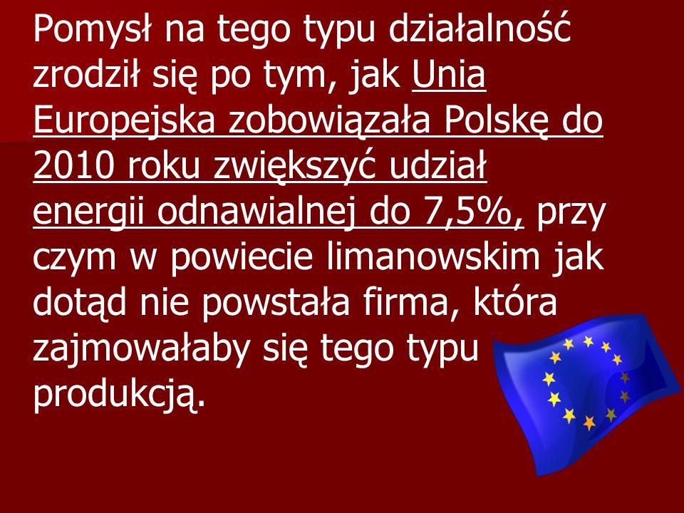 Pomysł na tego typu działalność zrodził się po tym, jak Unia Europejska zobowiązała Polskę do 2010 roku zwiększyć udział energii odnawialnej do 7,5%, przy czym w powiecie limanowskim jak dotąd nie powstała firma, która zajmowałaby się tego typu produkcją.