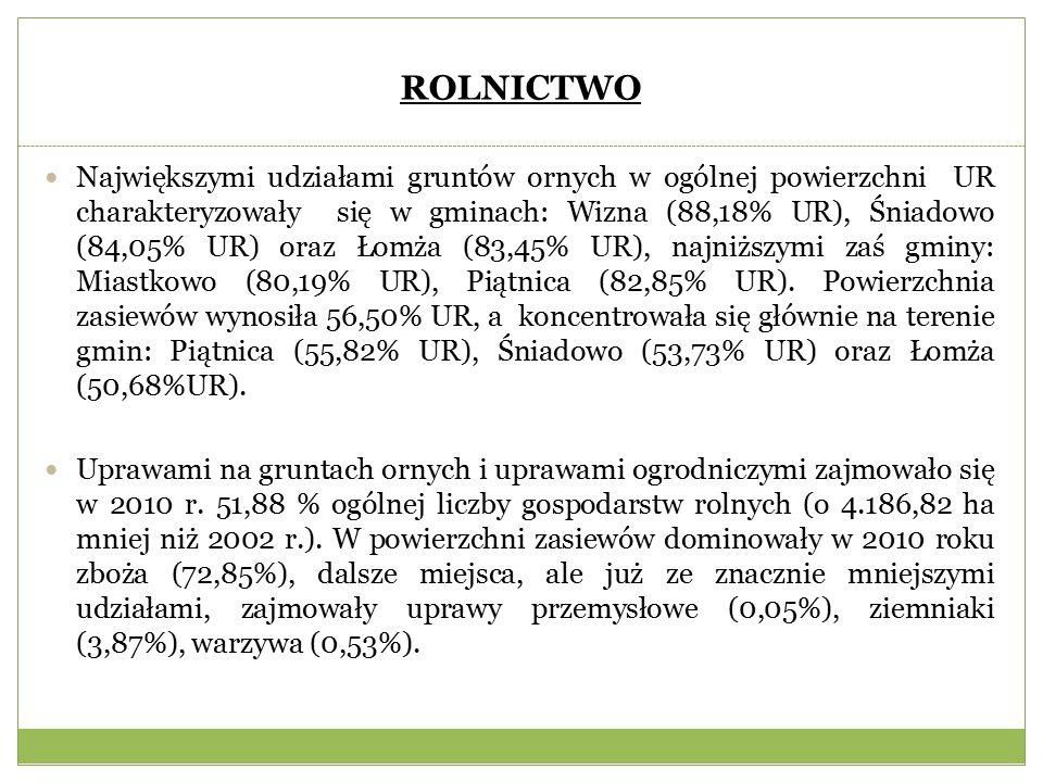 ROLNICTWO Największymi udziałami gruntów ornych w ogólnej powierzchni UR charakteryzowały się w gminach: Wizna (88,18% UR), Śniadowo (84,05% UR) oraz Łomża (83,45% UR), najniższymi zaś gminy: Miastkowo (80,19% UR), Piątnica (82,85% UR).