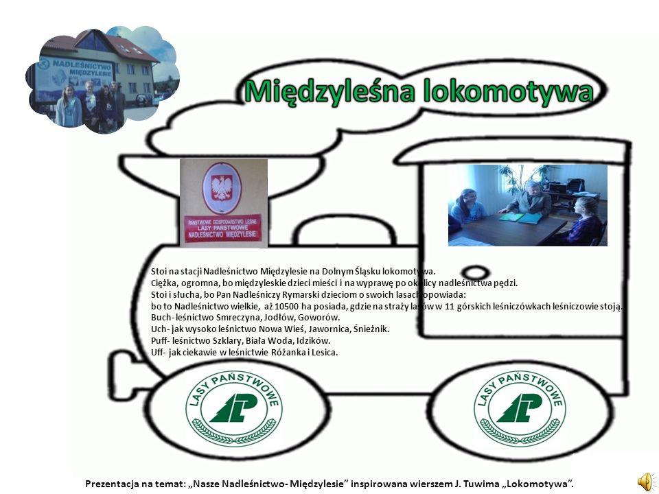 Stoi na stacji Nadleśnictwo Międzylesie na Dolnym Śląsku lokomotywa.