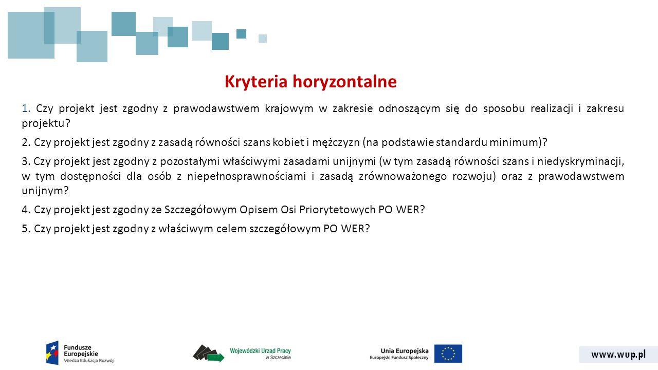 www.wup.pl Kryteria horyzontalne 1.