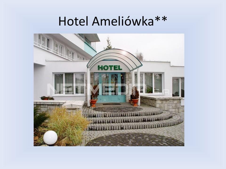 Dane kontaktowe : Tel : (41) 311 - 07 - 97 26-001 Masłów, Mochącice 176 www.ameliowka.pl