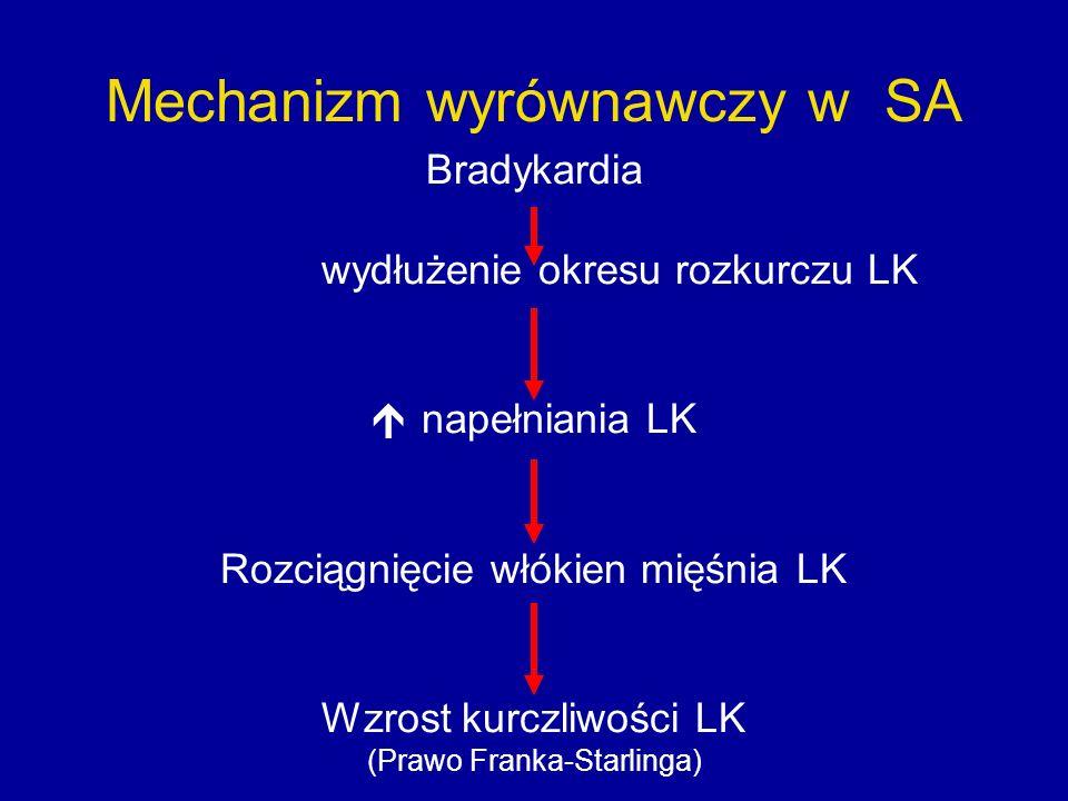 Mechanizm wyrównawczy w SA Bradykardia wydłużenie okresu rozkurczu LK  napełniania LK Rozciągnięcie włókien mięśnia LK Wzrost kurczliwości LK (Prawo Franka-Starlinga)