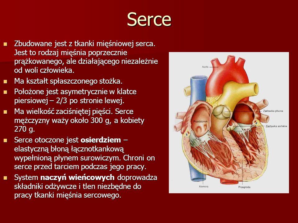 Serce Zbudowane jest z tkanki mięśniowej serca. Jest to rodzaj mięśnia poprzecznie prążkowanego, ale działającego niezależnie od woli człowieka. Zbudo