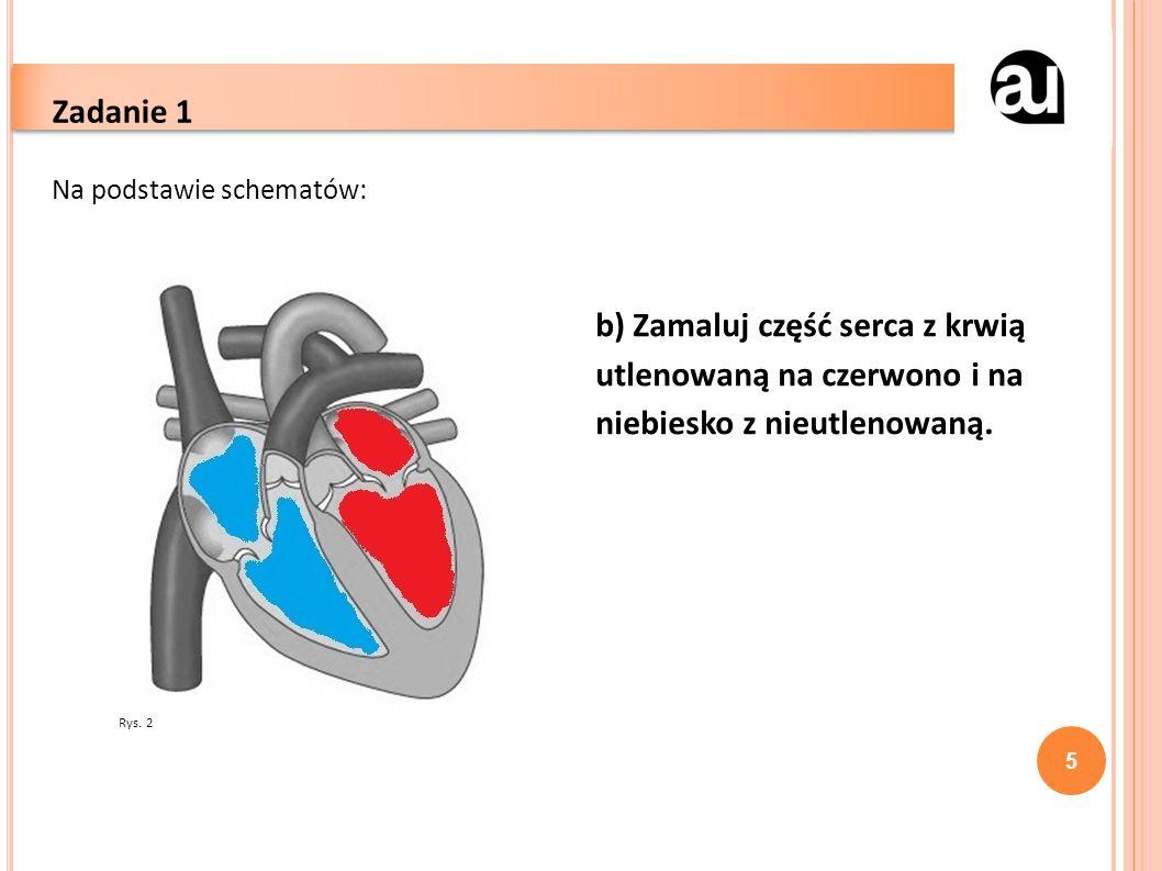 5 Zadanie 1 Na podstawie schematów: b) Zamaluj część serca z krwią utlenowaną na czerwono i na niebiesko z nieutlenowaną.