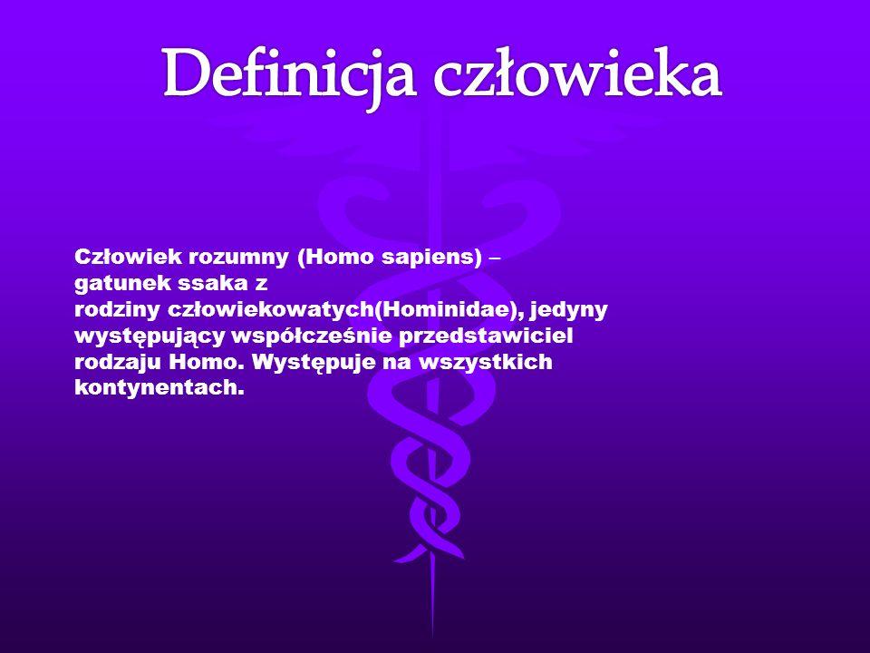 Szkielet, inaczej kościec lub układ kostny (łac.