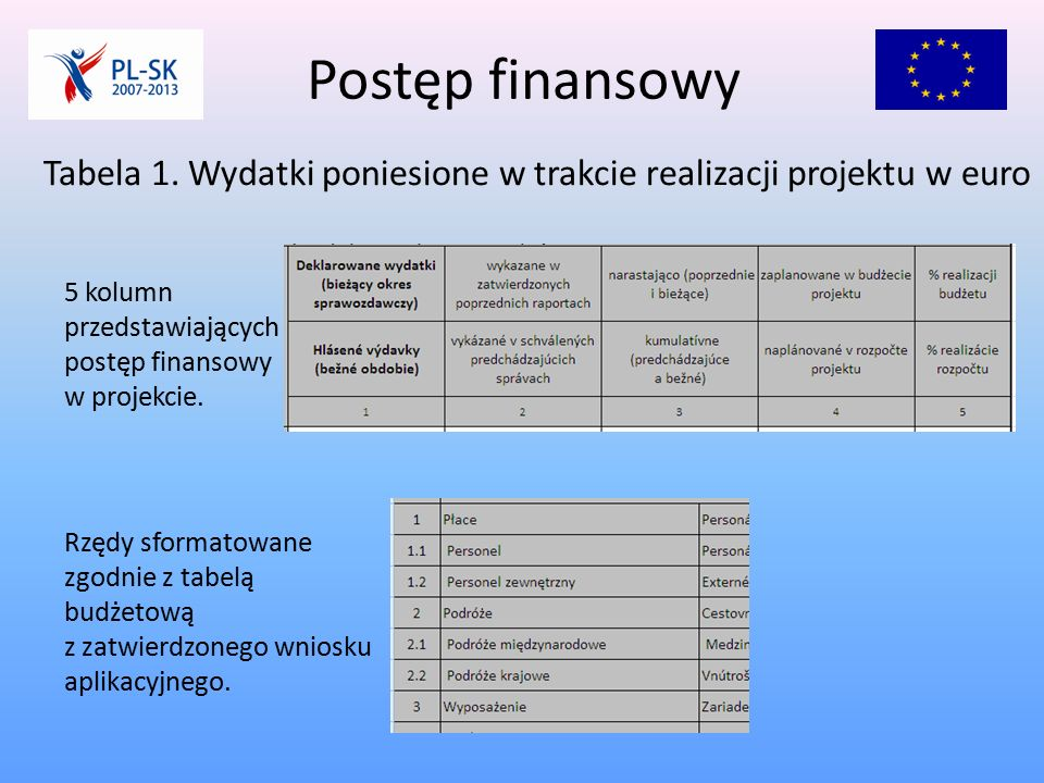 Postęp finansowy Tabela 1.