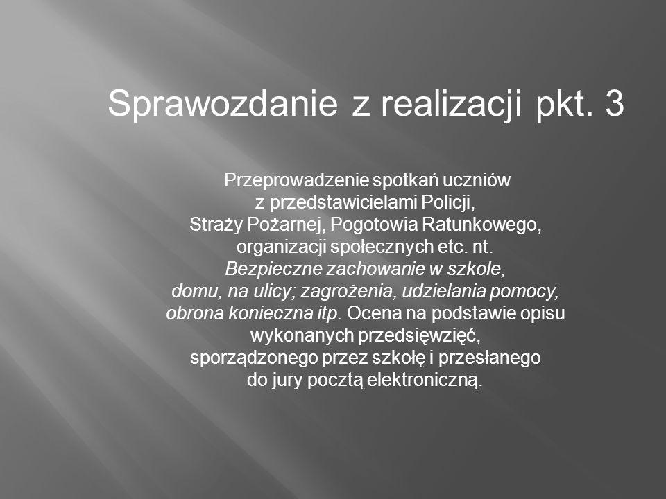 Sprawozdanie z realizacji pkt.
