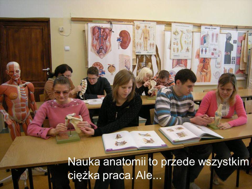 Nauka anatomii to przede wszystkim ciężka praca. Ale...
