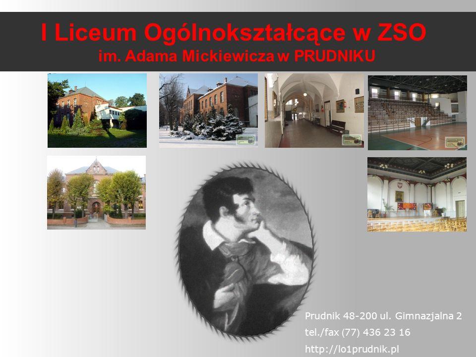 Należymy do Stowarzyszenia Szkół Innowacyjnych Regionu Opolskiego