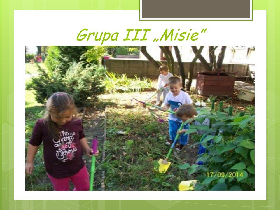 """Grupa III """"Misie"""