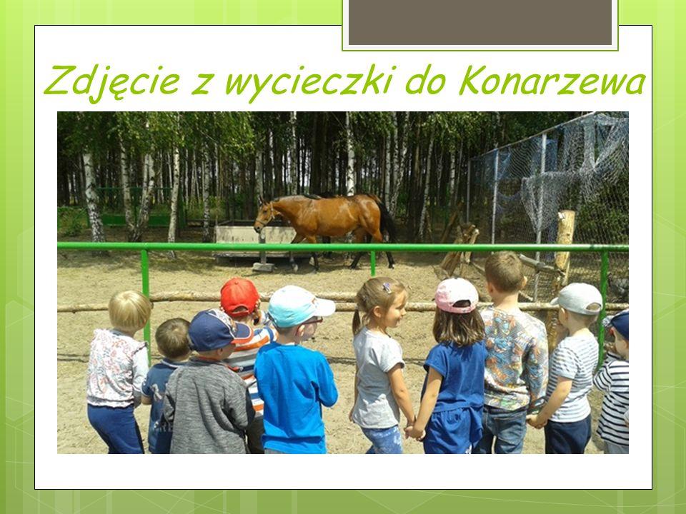 Zdjęcie z wycieczki do Konarzewa