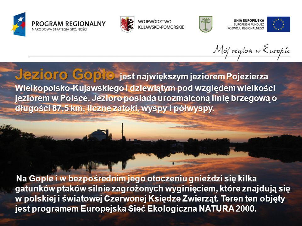 Jezioro Gopło jest największym jeziorem Pojezierza Wielkopolsko-Kujawskiego i dziewiątym pod względem wielkości jeziorem w Polsce.