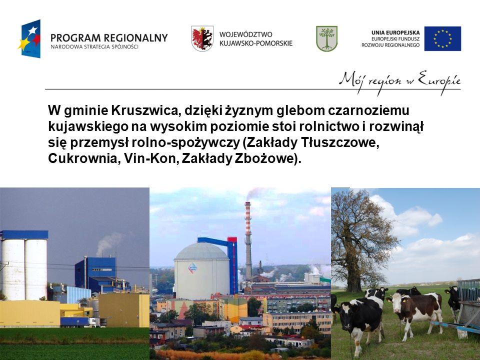 W gminie Kruszwica, dzięki żyznym glebom czarnoziemu kujawskiego na wysokim poziomie stoi rolnictwo i rozwinął się przemysł rolno-spożywczy (Zakłady Tłuszczowe, Cukrownia, Vin-Kon, Zakłady Zbożowe).