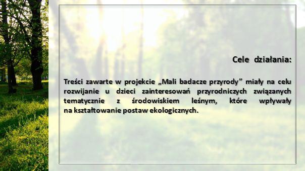 """Cele działania: Treści zawarte w projekcie """"Mali badacze przyrody miały na celu rozwijanie u dzieci zainteresowań przyrodniczych związanych tematycznie z środowiskiem leśnym, które wpływały na kształtowanie postaw ekologicznych."""