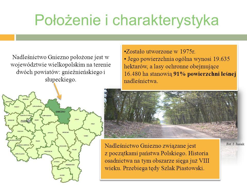 Położenie i charakterystyka Nadleśnictwo Gniezno położone jest w województwie wielkopolskim na terenie dwóch powiatów: gnieźnieńskiego i słupeckiego.