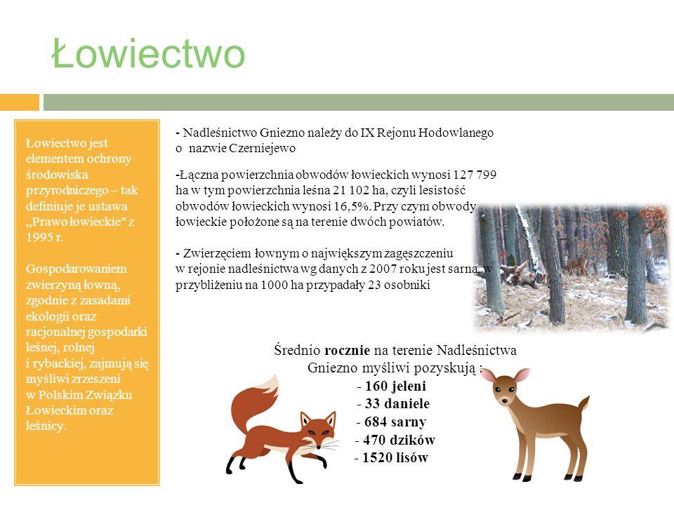 """Łowiectwo Łowiectwo jest elementem ochrony środowiska przyrodniczego – tak definiuje je ustawa """"Prawo łowieckie z 1995 r."""