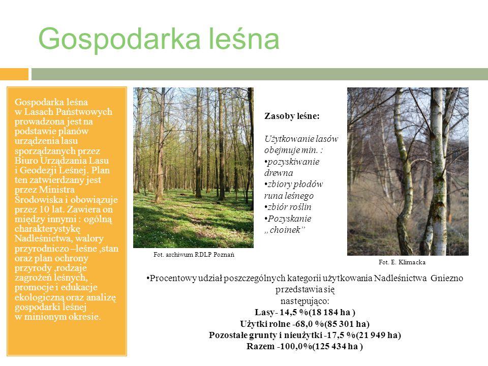 Gospodarka leśna Gospodarka leśna w Lasach Państwowych prowadzona jest na podstawie planów urządzenia lasu sporządzanych przez Biuro Urządzania Lasu i Geodezji Leśnej.