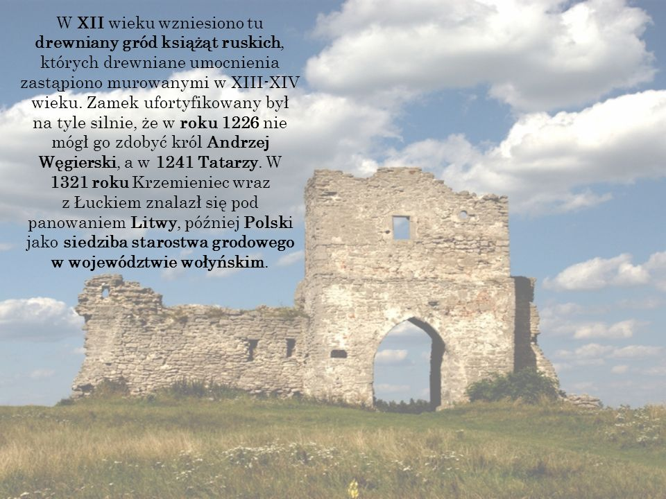 W XII wieku wzniesiono tu drewniany gród książąt ruskich, których drewniane umocnienia zastąpiono murowanymi w XIII-XIV wieku.