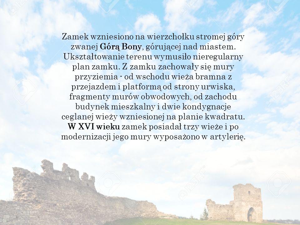 Zamek wzniesiono na wierzchołku stromej góry zwanej Górą Bony, górującej nad miastem.
