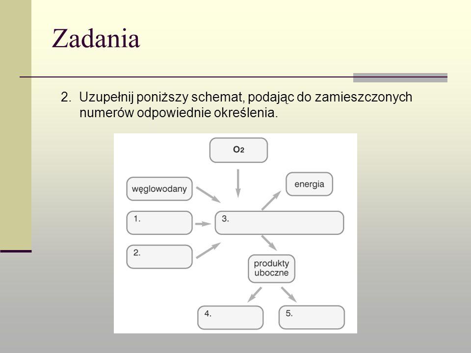 Zadania 2. Uzupełnij poniższy schemat, podając do zamieszczonych numerów odpowiednie określenia.