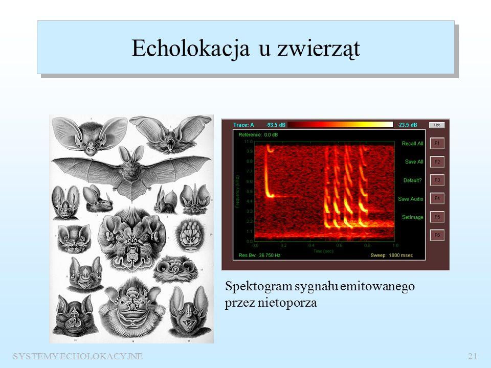 SYSTEMY ECHOLOKACYJNE20 Ultrasonografy