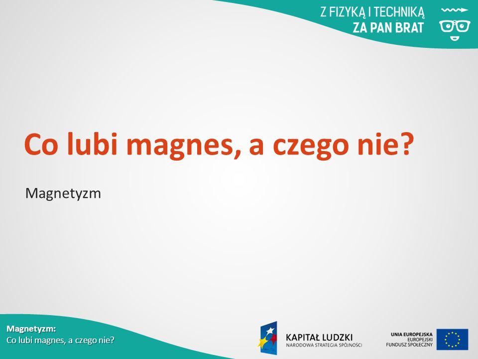 Magnetyzm: Co lubi magnes, a czego nie? Co lubi magnes, a czego nie? Magnetyzm