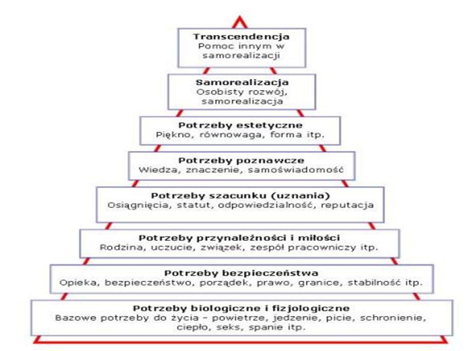 Zachowania problemowe umożliwiają: zaspokojenie najważniejszych potrzeb psychologicznych; realizację ważnych celów rozwojowych; radzenie sobie z przeżywanymi trudnościami.