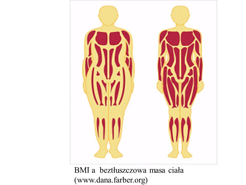 BMI a beztłuszczowa masa ciała (www.dana.farber.org)