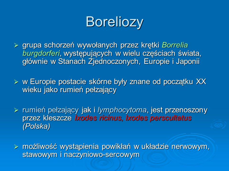 Boreliozy  grupa schorzeń wywołanych przez krętki Borrelia burgdorferi, występujących w wielu częściach świata, głównie w Stanach Zjednoczonych, Europie i Japonii  w Europie postacie skórne były znane od początku XX wieku jako rumień pełzający  rumień pełzający jak i lymphocytoma, jest przenoszony przez kleszcze Ixodes ricinus, Ixodes perscultatus (Polska)  możliwość wystąpienia powikłań w układzie nerwowym, stawowym i naczyniowo-sercowym