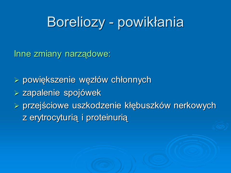 Boreliozy - powikłania Inne zmiany narządowe:  powiększenie węzłów chłonnych  zapalenie spojówek  przejściowe uszkodzenie kłębuszków nerkowych z erytrocyturią i proteinurią