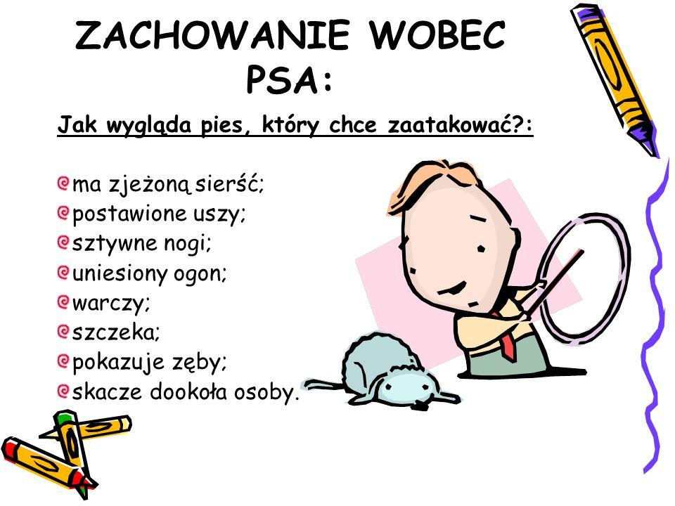 ZACHOWANIE WOBEC PSA: Jak wygląda pies, który chce zaatakować?: ma zjeżoną sierść; postawione uszy; sztywne nogi; uniesiony ogon; warczy; szczeka; pokazuje zęby; skacze dookoła osoby.