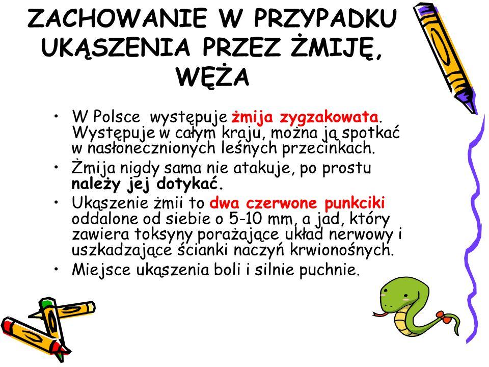 ZACHOWANIE W PRZYPADKU UKĄSZENIA PRZEZ ŻMIJĘ, WĘŻA W Polsce występuje żmija zygzakowata. Występuje w całym kraju, można ją spotkać w nasłonecznionych