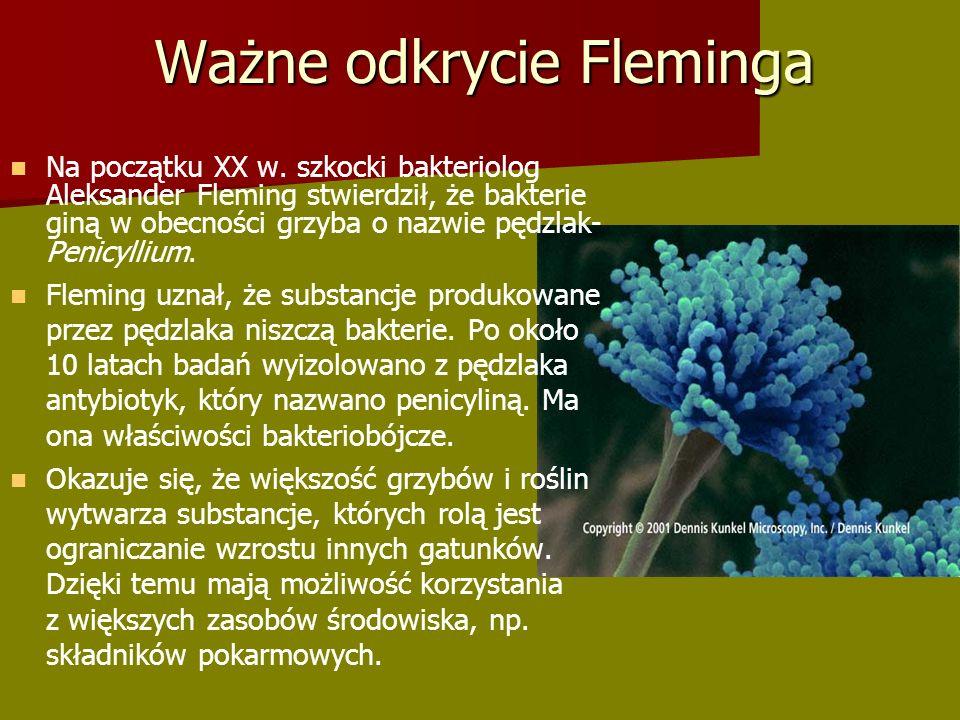 Ważne odkrycie Fleminga Na początku XX w.