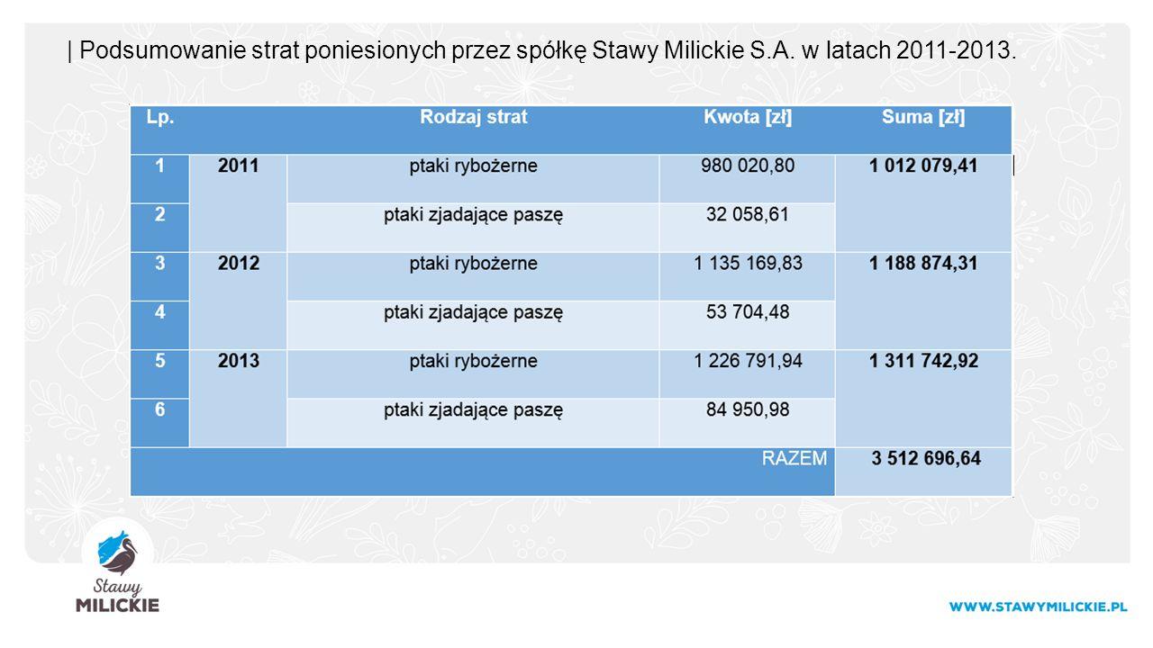| Podsumowanie strat poniesionych przez spółkę Stawy Milickie S.A. w latach 2011-2013.