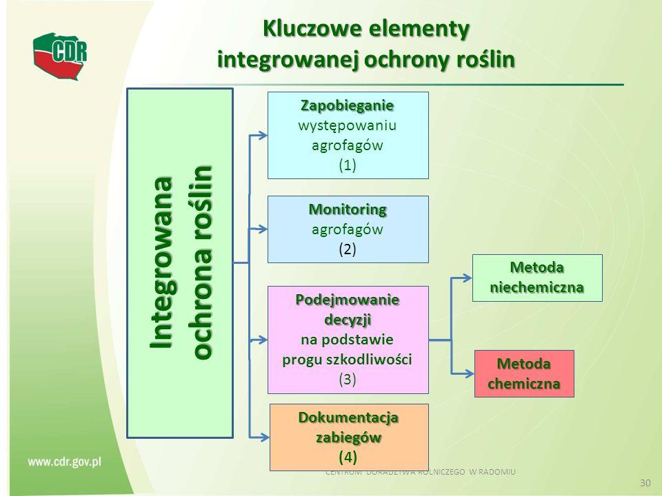 CENTRUM DORADZTWA ROLNICZEGO W RADOMIU 30 Kluczowe elementy integrowanej ochrony roślin Integrowana ochrona roślin Zapobieganie Zapobieganie występowaniu agrofagów (1) Monitoring Monitoring agrofagów (2) Podejmowanie decyzji na podstawie progu szkodliwości (3) Dokumentacja zabiegów (4) Metoda niechemiczna Metoda chemiczna