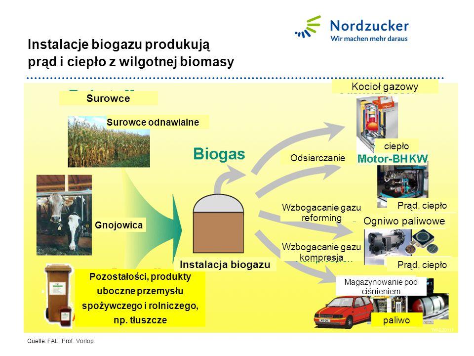 Instalacje biogazu produkują prąd i ciepło z wilgotnej biomasy Quelle: FAL, Prof.