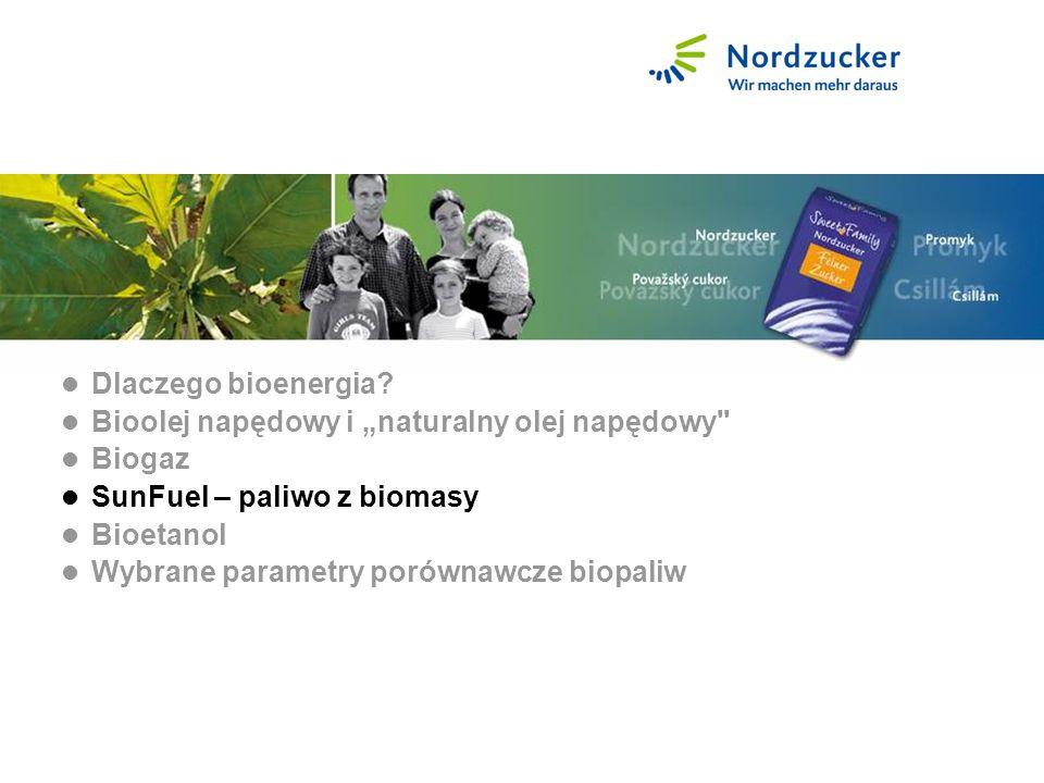 SunFuel - Treibstoff aus Biomasse Dlaczego bioenergia.