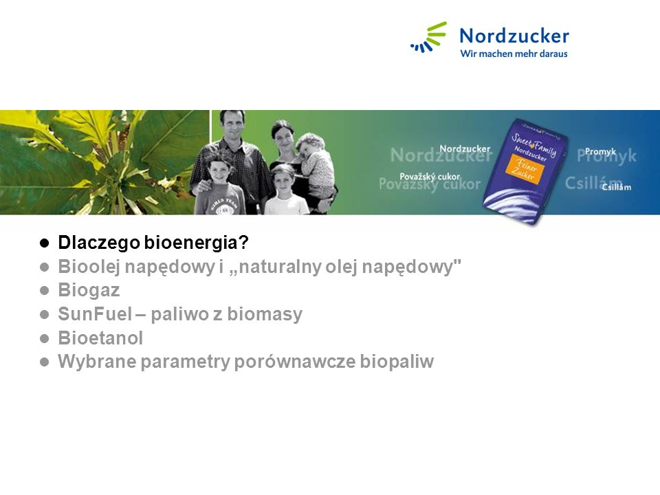 Warum Bioenergie. Dlaczego bioenergia.