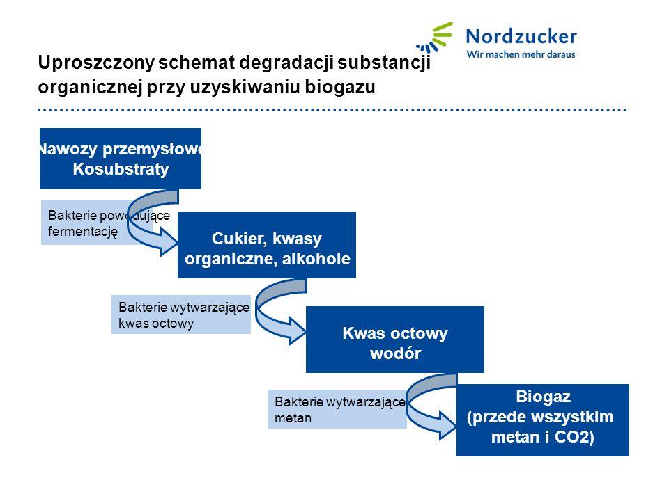 Uproszczony schemat degradacji substancji organicznej przy uzyskiwaniu biogazu Nawozy przemysłowe Kosubstraty Cukier, kwasy organiczne, alkohole Kwas octowy wodór Biogaz (przede wszystkim metan i CO2) Bakterie powodujące fermentację Bakterie wytwarzające kwas octowy Bakterie wytwarzające metan