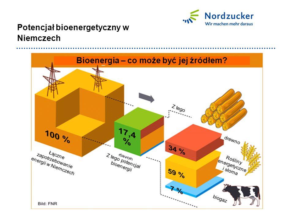 Potencjał bioenergetyczny w Niemczech Bioenergia – co może być jej źródłem.