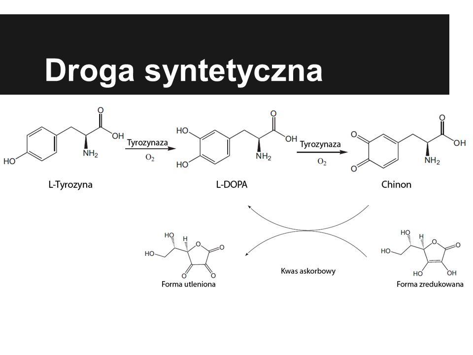 Pozyskiwanie Tyrozynazy Agaricus bisporus Ekstrakcja acetonem MMH (monometylohydrazyna) - wykorzystywana jako paliwo hipergolowe w silnikach rakietowych.