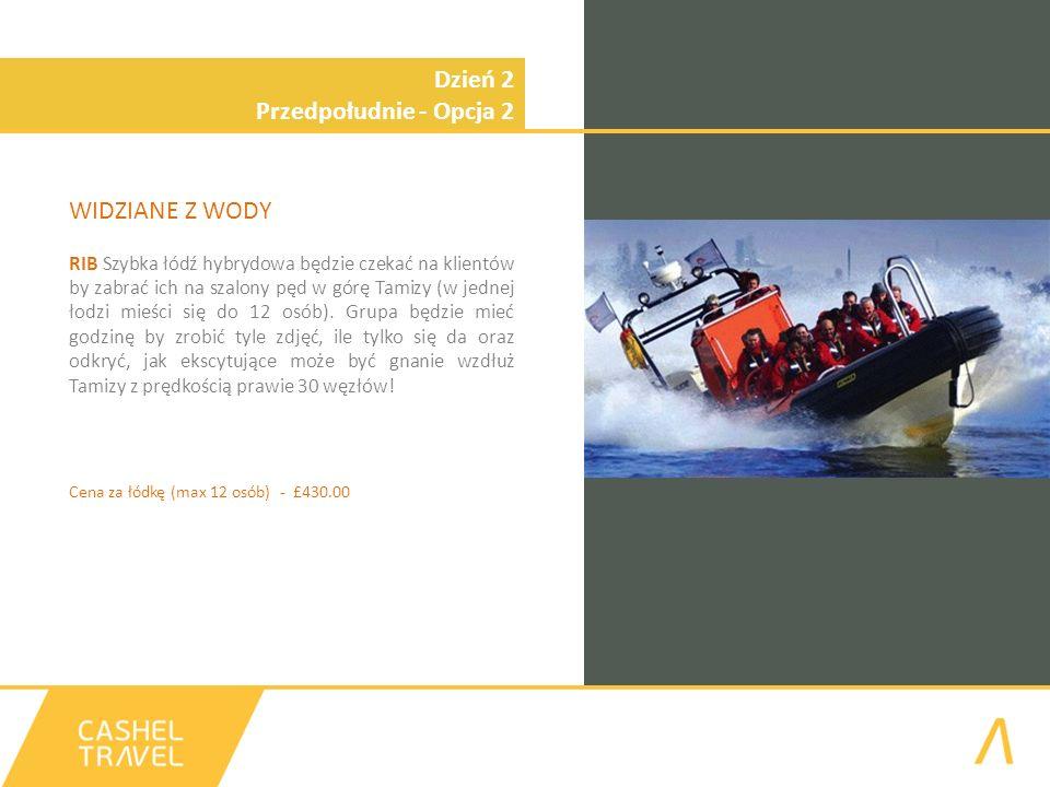 Dzień 2 Przedpołudnie - Opcja 2 WIDZIANE Z WODY RIB Szybka łódź hybrydowa będzie czekać na klientów by zabrać ich na szalony pęd w górę Tamizy (w jednej łodzi mieści się do 12 osób).