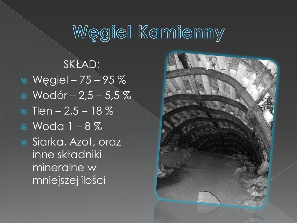 SKŁAD:  Węgiel – 75 – 95 %  Wodór – 2,5 – 5,5 %  Tlen – 2,5 – 18 %  Woda 1 – 8 %  Siarka, Azot, oraz inne składniki mineralne w mniejszej ilości