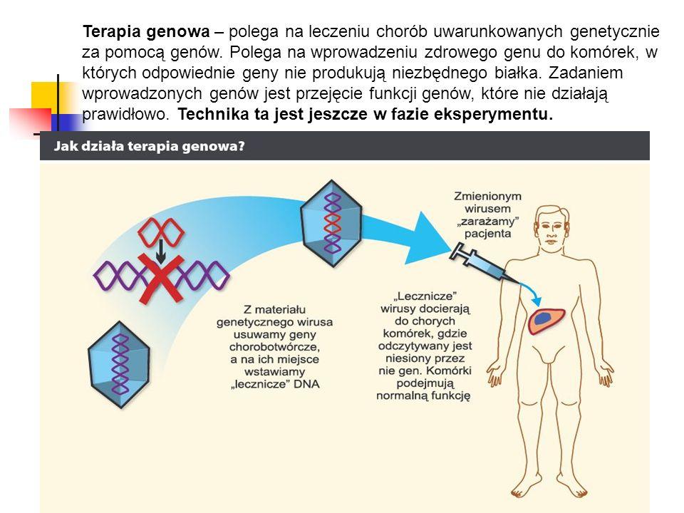 Terapia genowa – polega na leczeniu chorób uwarunkowanych genetycznie za pomocą genów. Polega na wprowadzeniu zdrowego genu do komórek, w których odpo