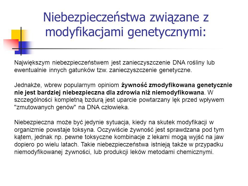 Niebezpieczeństwa związane z modyfikacjami genetycznymi: Największym niebezpieczeństwem jest zanieczyszczenie DNA rośliny lub ewentualnie innych gatun