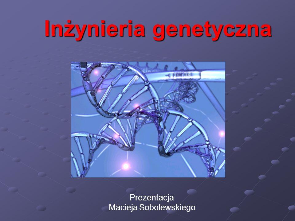 Inżynieria genetyczna Prezentacja Macieja Sobolewskiego