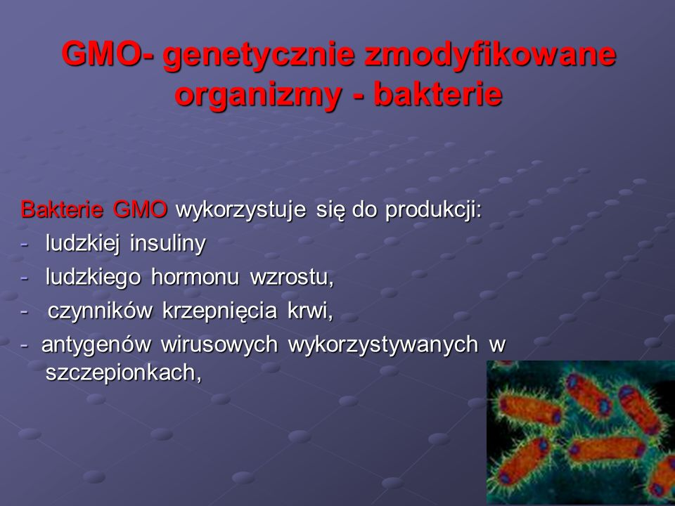 GMO- genetycznie zmodyfikowane organizmy - bakterie Bakterie GMO wykorzystuje się do produkcji: -ludzkiej insuliny -ludzkiego hormonu wzrostu, - czynn
